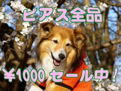 ALL1000.jpg