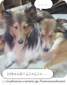 image9969501.jpg
